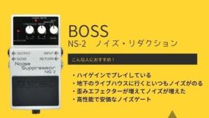 BOSS/NS-2のレビューと評価!おすすめの使い方やつなぎ方を解説