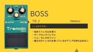 BOSS/TR-2のレビューと使い方!トリムポットが増設されてるってホント?
